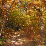 Fall Colours while hiking Auberge Inn Hostel