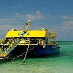 The Catamaran