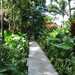 walkway to the spa and garden