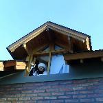 la ventana del dormitorio ppal.