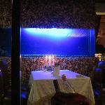 Fish Club Restaurant