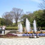 公園の南口から入ると、この風景が待っています。梅、桜、その他いろいろな草花を見学するスタート地点です。