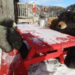 outside bear bench