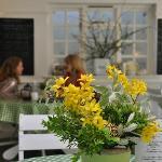 The Pines Tea Room