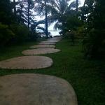 Path go the beach