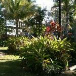 Gardens at Marlin Cove resort