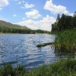 Fenton Lake