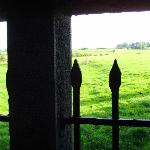 view out into the green tranquil fields