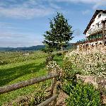 Hôtel au pied des Vosges