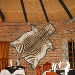 Nice Zebra Rug.