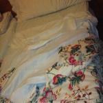 keine richtigen Decken, nur Bettlacken und Überzieher voll mit Haaren