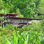 Lookout Inn - In the jungle yet on the beach