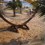 col hammocks