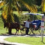 """""""Cuban taxi"""""""