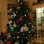 Christmas Tree in the Gift Shop