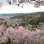 花見山公園・・・中腹からの集落の眺め