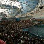 Photo of Dalian Ocean Amusement Park