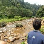 Elephant trek at the river