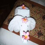 a cute little elephant left by one of the cleaners that my hubby had befriended, it was his last