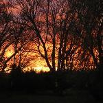 coucher de soleil sur le parc