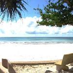 Beach view seat