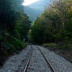 La voie ferrée traverse le sentier.