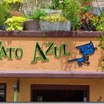 Entrance to El Gato Azul in the summer