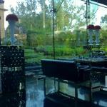 The Qube restaurant