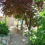 Jardin,  allée aux orthensias