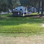 Pitching golf green