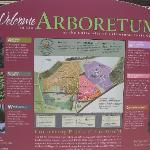 Overview of the Arboretum