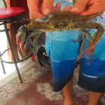 Crab fishing was a success