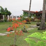 Gerden Flower area lokasi Cafe Amore
