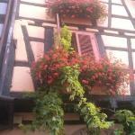 Photo de Hotel Restaurant Au Dolder