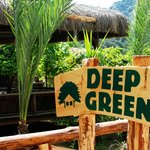 Olympos Deep Green Bungalows