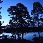 view at dawn