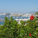 Zi 307 - Aussicht von unserem Balkon