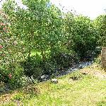 The Stream running through the garden