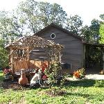 Pet friendly - new arbor at Coyote Hollow