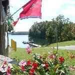 Beautiful scene, flowers and TN flag