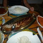 Barracuda for Dinner