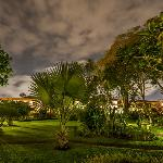 Night time view of gardens