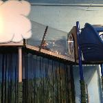 Climbing Area, Weather/Science Theme Station