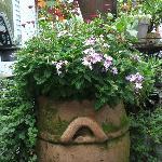 Belle terrasse entourée de fleurs