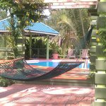 Hammock under the trellis by the pool