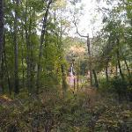 trail along pond