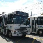 Départs Island Explorer(autobus gratuit)