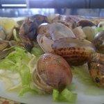 Photo of Les Palmeres Restaurant Marisqueria