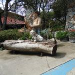 Our friend visiting the statue of the old miner at the entrance to Ironstone Vineyards.
