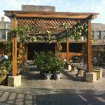 Roof Top Garden!!